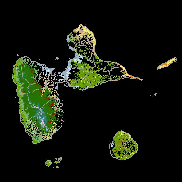 Cartographie des formations végétales de Guadeloupe 2004