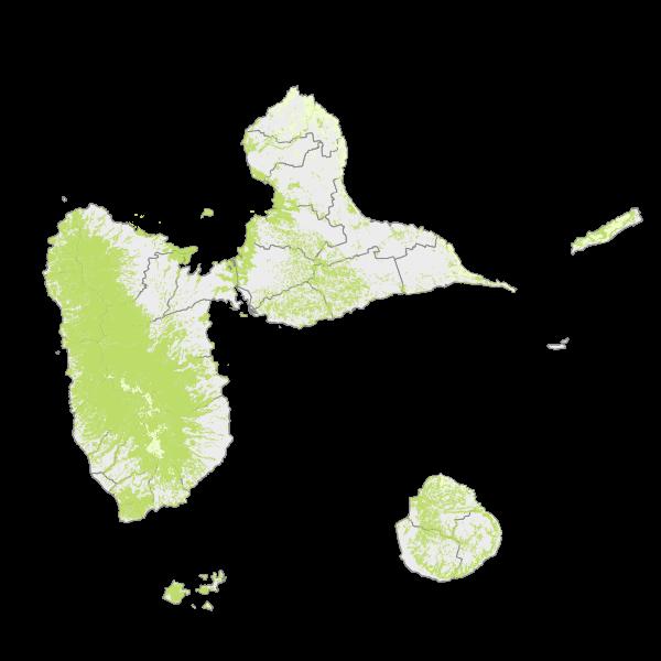 Occupation thématique à partir de la couche des forêts de Guadeloupe 2013